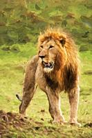 Impressionist art of a proud Male Lion Panthera leo from the Masia Mara in Kenya, Africa.