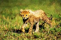 Impressionist art of a Cheetah Cub (Acinonyx jubatus) in the Masia Mara Game Reserve, Kenya, Africa.