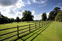 Post and rail fencing around a tidy paddock.