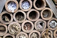 Insect hotel offering nest places in clay pipes.