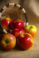 Scattered red apples. Still life.