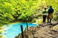Beechwood and Urederra river. Nacedero del Urederra Natural Reserve. Urbasa y Andia Natural Park. Navarre. Spain.