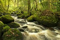 River Bovey in Houndtor Wood during Autumn in Dartmoor National park, Devon, England.