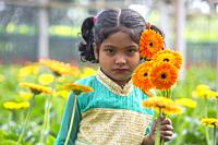 In many areas of Bangladesh, flower is being cultivated for commercial purposes fetching good incentive for flower farmers. Hundreds of thousands of s...