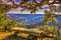 Bench overlooking North Rim of Grand Canyon.