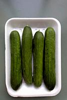 Carton of Biologically grown Cucumbers from a local Greengrocers, Crete, Greece.