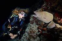 Female scuba diver looks at moray eel in the night. Laced moray, Leopard moray or Honeycomb Moray (Gymnothorax favagineus).