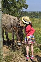 child discovering the animals of the farm close to the Terra do Sempre guesthouse near Grandola, Alentejo region, Portugal, southwertern Europe.