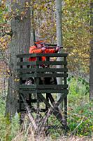 Big game hunter dressed in orange in raised hide aiming and shooting deer in forest during the hunting season in autumn