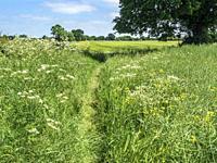 Footpath by farmland at Hay a Park near Knaresborough North Yorkshire England.