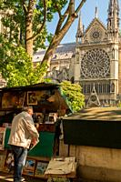 Traditional bookseller(bouquiniste) in front of Notre Dame de Paris in a sunny day. Paris, France.