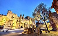 The Papal palace. UNESCO World heritage site. Avignon. Provence-Alpes-C™te d'Azur. France.