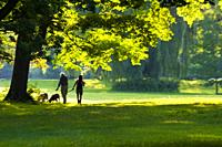 "Two seniors and their dogs in a park early in the morning, Ontario, Canada. It's also a type of shinrin-yoku, a term that means """"taking in the fores..."