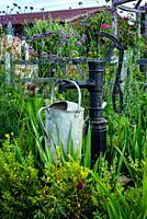 (New Forest Lavender Gardens, Wiltshire, England).