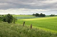 Landscape near Wijlre in the Dutch most hilly province Limburg.