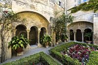 Cloister of the Monastery of San Paul de Mausole at Saint-Remy de Provence, where Van Gogh spent in 1889. Bouches du Rhone, Provence, France.