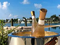 Champagne bottle in ice bucket on table outdoors, Key Biscayne, Florida, USA.
