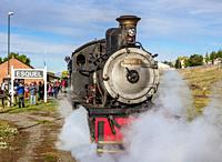 Old Patagonian Express La Trochita, steam train, Esquel Train Station, Chubut Province, Patagonia, Argentina.