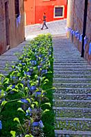 Floral representation of the staircase of the church of Sant Feliu, Temps de Flors 2018, Girona, Catalonia, Spain
