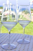 Glasses of white wine in bar Beach club at Adriatic sea in Guaceto coast Puglia Italy.