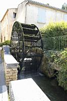 Moss covered waterwheel with shimmering beads of clear water cascading into the transparent waters of the river Sorgue in L'Isle-sur-la-Sorgue, Proven...