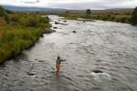 Madison River flyfishing, Three Dollar Bridge Fishing Access Site, Montana.