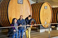 Guide with couple of tourists, Bodegas Baigorri, Samaniego, Rioja Alavesa, Araba, Basque Country, Spain, Europe