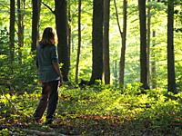 Woman watching beech forest (Fagus sylvatica) at Pla del Rovirol site, with late afternoon sunlight. Montseny Natural Park. Barcelona province, Catalo...