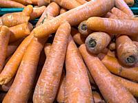Carrot. Market.
