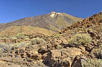Teide volcano, Cañadas del Teide National Park, Tenerife, Canary Islands, Spain.