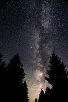 Milky Way on forest in carpathians. Carpathian Mountains, Ukraine, Eastern Europe