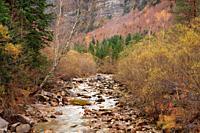 Arazas river in the Ordesa valley from the Cazadores bridge. Ordesa y Monte Perdido national park. Huesca.