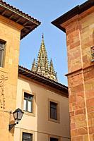Cathedral San Salvador de Oviedo, in Spain.