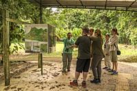 Tour guide with a Tourists, Tenorio Volcano National Park, Costa Rica.
