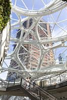 Seattle, Washington: View of Amazon Tower III under construction from atrium of the Spheres on the Amazon Urban Campus. The 37-story office building i...