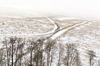 Canada, BC, Bridesville. Farm roads running through cold, snowy fields.