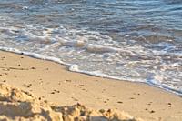 Foamy wave with bubbles hits sandy beach grains macro closeup background texture.