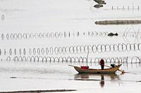 China, Fujiang Province, Xiapu County, nets in open sea, Fish catching.