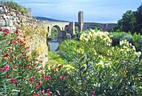Medieval bridge over river Fluvia. Besalu, Gerona province, Catalonia, Spain.