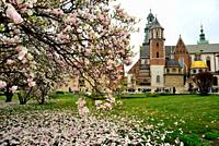 Wawel: Cathedral and gardens, Krakow, Poland.