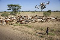 Drone flying over herd, Ethiopia