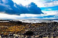 Seal beach of Snaefellsnes peninsula, Iceland.