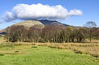 Blencathra fell from Dale Bottom in the English Lake District National Park, Cumbria, England.