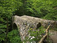 Salguera Romanesque bridge over Ges river. Vidrà village countryside. Osona region, Girona province, Catalonia, Spain.