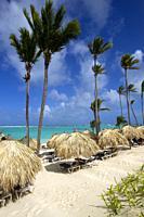 White sand beach, palm trees and crystal clear water, Bávaro beach, Verón Punta Cana, Higüey municipality, La Altagracia province, República Dominican...