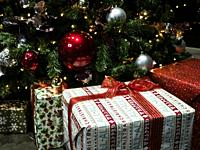 Christmas presents by indoor Christmas tree.