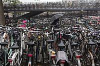 Bicycle parking near Amsterdam central train station.