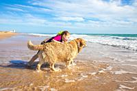 smiling four years old little girl talking and playing with a dog, golden retriever breed pedigree, on seashore in Palmar Beach (Vejer, Cadiz, Andalus...