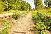 old closed overgrown railway in Poland