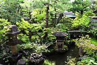 Nomura Samurai Family house garden in Nagamachi district of Kanazawa, Japan, Asia.